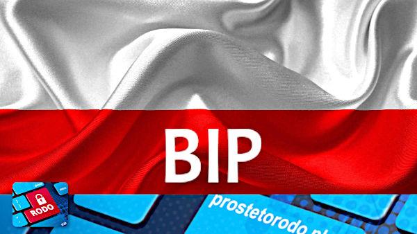 Webinar jak prawidłowo prowadzić BIP